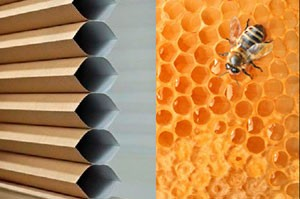 honeycomb-shade compared to honeycomb-hive