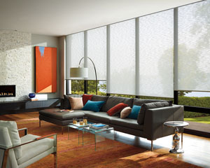 hunter douglas window shades