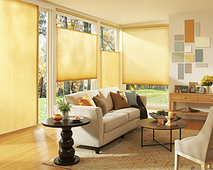 Applause-Lite-Rise-Living-Room-Window-Treatments-2015