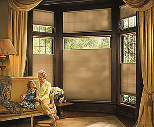 Hunter-Douglas-Bay-Window-St-Louis