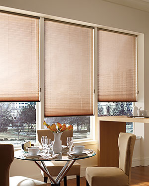 Pleated Shades Easyrise