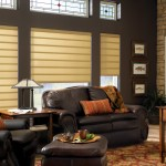 window treatments for Dens