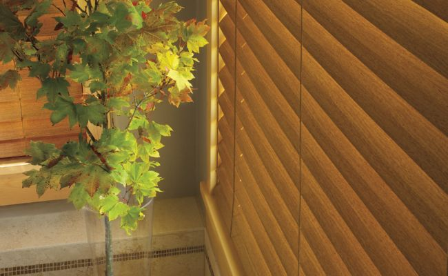Everwood Collection by Hunter Douglas